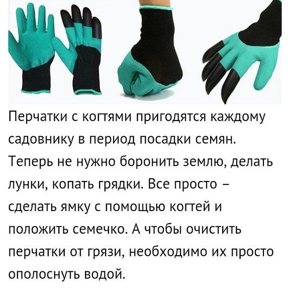 поздравления подарок перчатки думайте